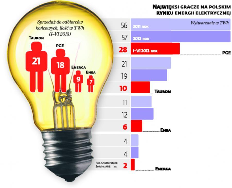 Najwięksi gracze na polskim rynku energii elektrycznej