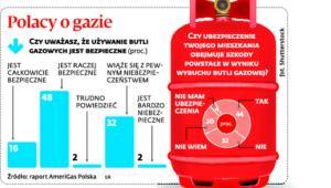 Polacy o gazie