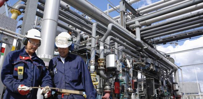 PGNiG, które posiada 11,92% udziałów w złożu, planuje w 2013 r. wydobycie w Norwegii ok. 370 tys. ton ropy i ok. 0,3 mld m3 gazu.
