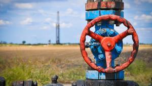Dzięki ogłoszonym wczoraj umowom, jeśli dostawy zostaną w całości skierowane do Polski, można spodziewać się zaspokojenia ponad 10 proc. krajowego zapotrzebowania na gaz ziemny.