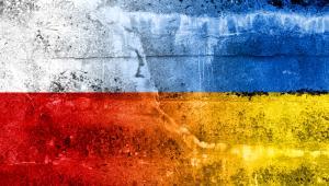 Jeśli będą nas dzielić, korzyści odniesie rosyjski imperializm. Dlatego historycy powinni analizować wydarzenia z czasów II wojny światowej