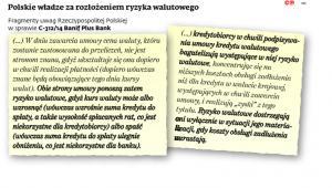 Polski władze za rozłożeniem ryzyka walutowego