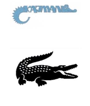 To krokodyl czy kajman?
