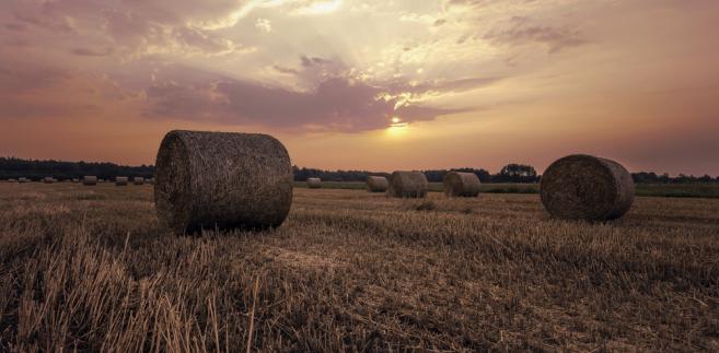 Jakość przepisów ograniczających obrót ziemią rolną budzi ogromne zastrzeżenia