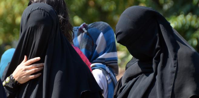 Kroki przeciwko zasłanianiu twarzy podjęto już wcześniej m.in. w Belgii, Francji, Danii i Hiszpanii.