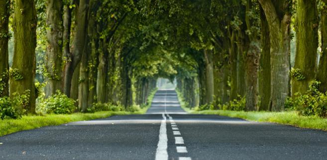 Według prezesa NIK Krzysztofa Kwiatkowskiego, zarządcy tzw. starodroży w większości nie przeprowadzali wymaganych kontroli stanu technicznego tych dróg lub przeprowadzali je niezgodnie z przepisami prawa budowlanego i ustawy o drogach publicznych.
