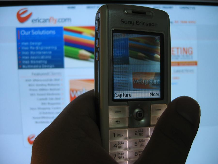 Biorąc pod uwagę podstawowy podział reklam internetowych w roku 2011, najważniejszym kanałem jest nadal reklama graficzna z 41-proc udziałem w torcie.