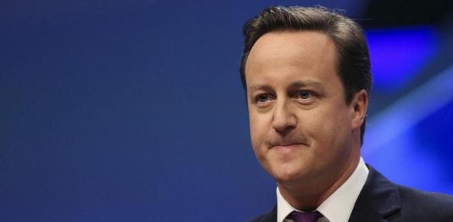 Premier David Cameron (...) chce ustalić parametry nowych stosunków Londynu z UE.